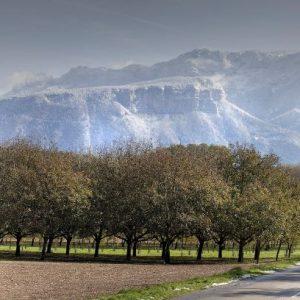 paysage Isère et Vercors © Bernard Ciancia